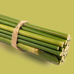 Bamboo Tree Extract