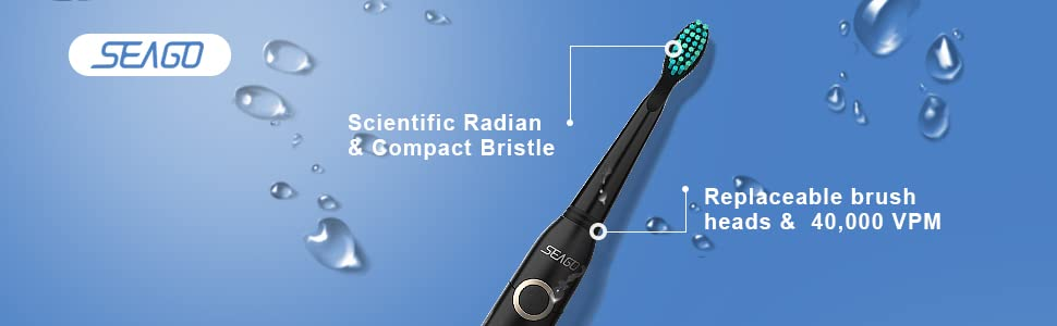 Replaceable brush heads with 40000 VPM,scientific radian and compact bristle