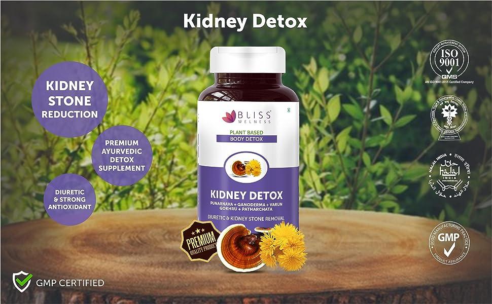 kidney stone medicine ayurvedic homeopathic remover crusher patharchata gokhru detox pathri diuretic