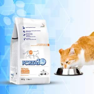 Renal bag on the left and orange cat eating on the right