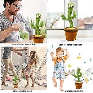 Singing cactus brings joy