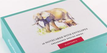 Elephants Series