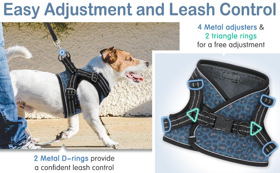 puppy harness