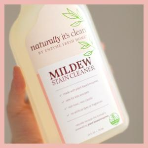Mildew Stain Cleaner product being held