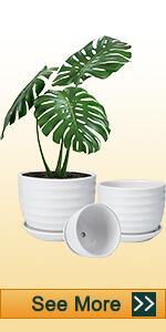 Ceramic White Pots with Horizontal  Stripes