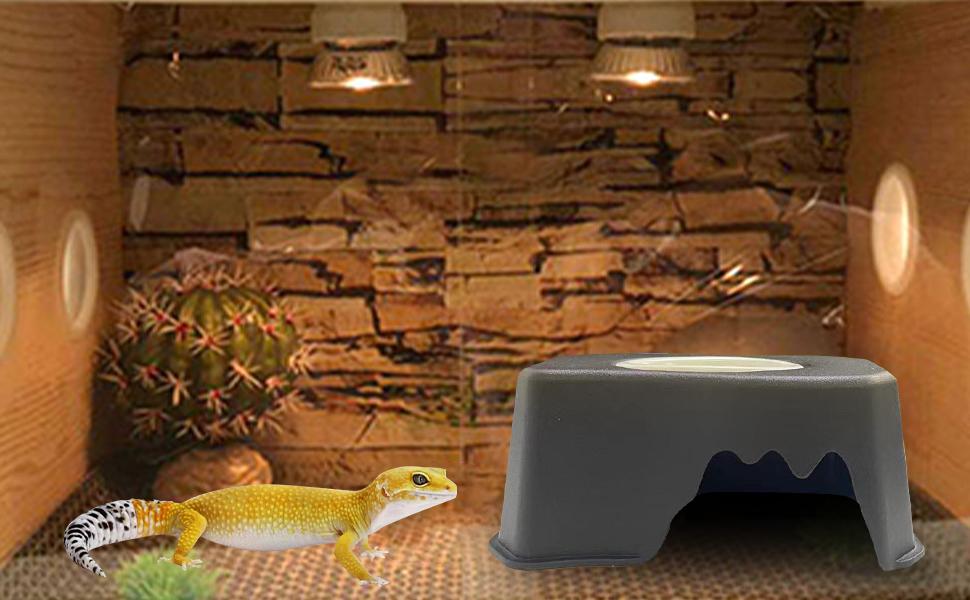 Reptile hide box