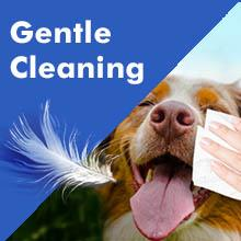 gentle cleaning