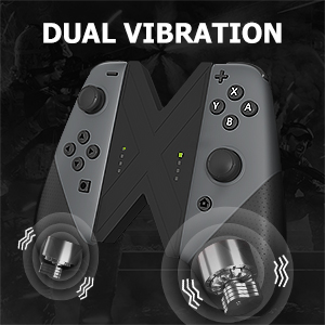 Dual Vibration