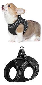 small dog harness