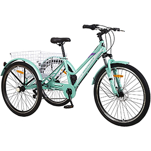 Cyan Mountain Tricycle