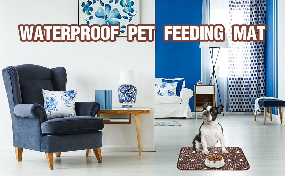 dog food mat