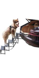 5 steps widen dog car ramp