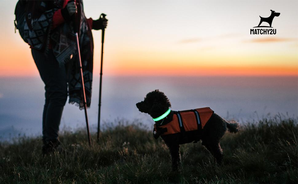 matchy2u pet supplies-led dog collar red-A+