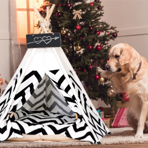 Pet Teepee Tents for fog
