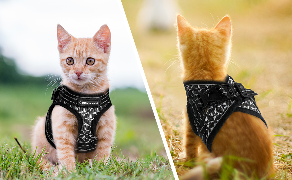 Cat Harness and Leash Escape Proof