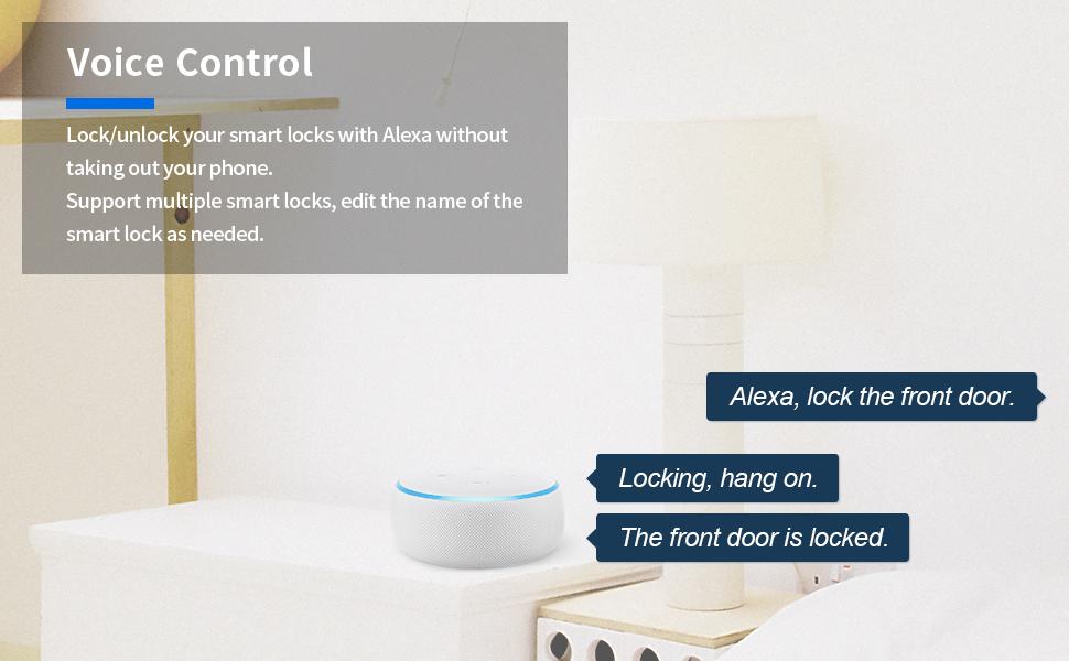 Use Alexa to lock/unlock
