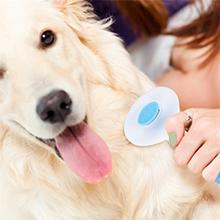 Brush pets removes loose hair, eliminates tangles, dander, trapped dirt from pet or mat