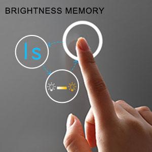 Brightness Memory