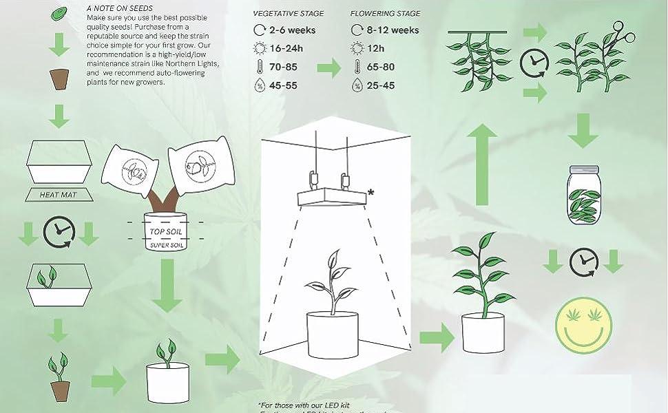 thebudgrower calihotsoil how to grow plants
