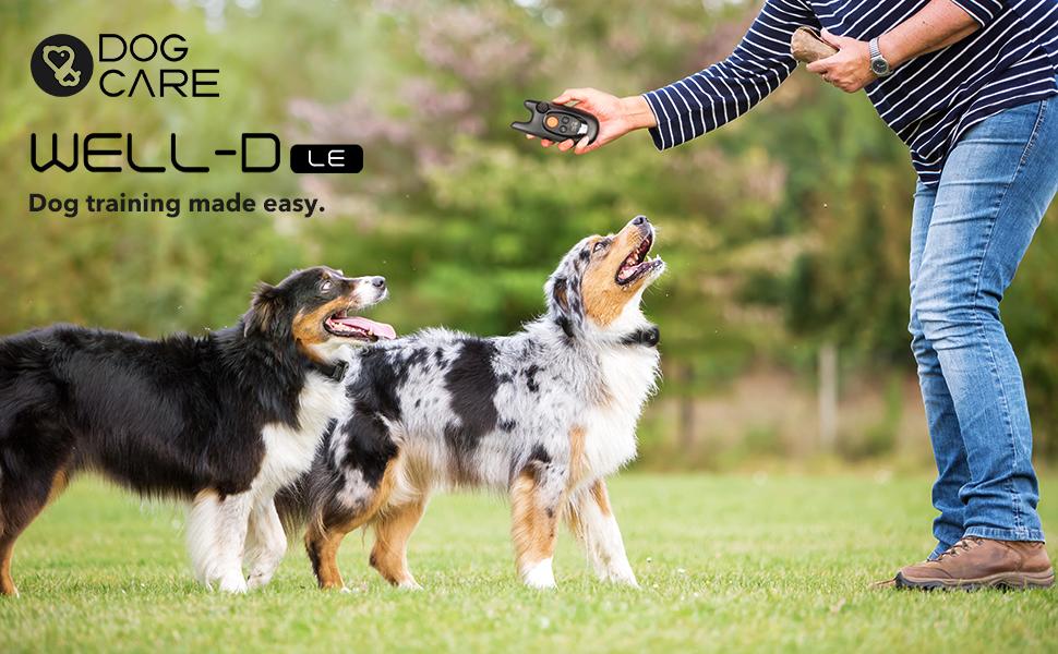 dog training collar shock collar