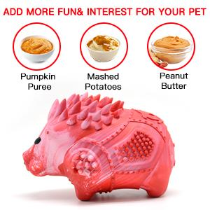 Add more fun interest for your pet