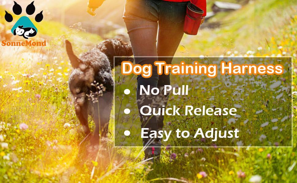 SonneMond Dog Training Harness