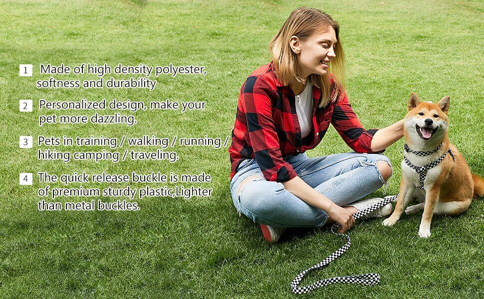dog collar harness leash set