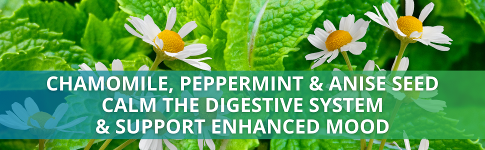 Alka-Pan - Chamomile, Peppermint amp; Anise Seed Calm the Digestive system  amp; Support Enhanced mood