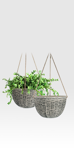 hanging pots for plants