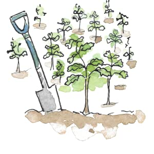 illustration of a spade and trees