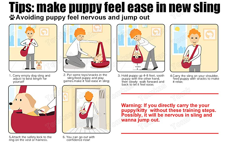 dog carriers for small dogs