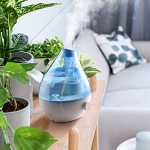 Humidifiers for Plants