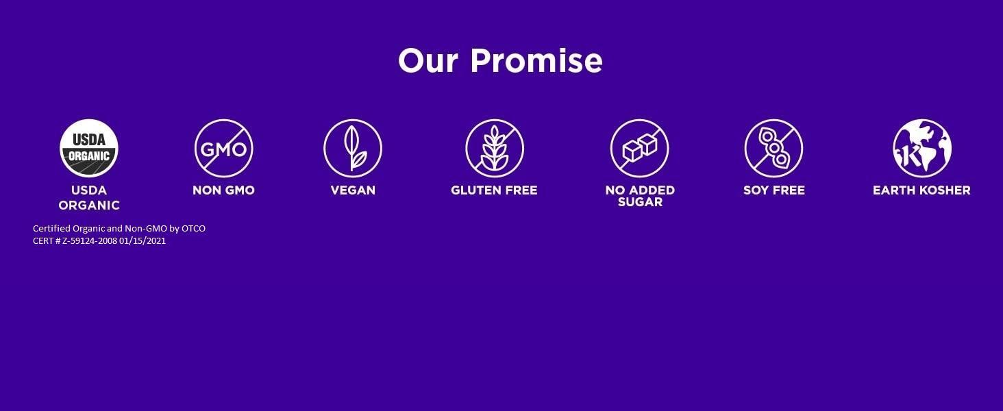 vegan broth