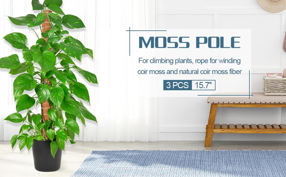 MOSS POLE 3PCS