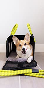 Roverlund Large Pet Carrier with Corgi