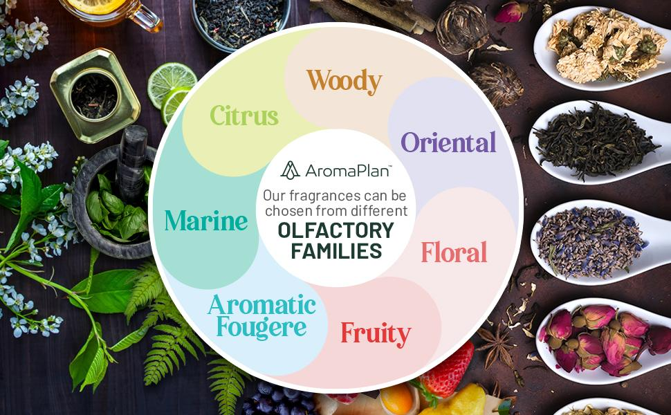 maany types of scents and aromas to choose from