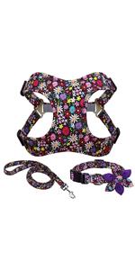 dog collar and harness set