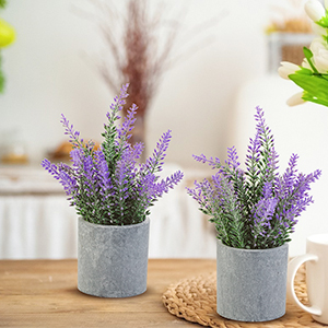 Lavender Farmhouse plants decor table decoration for living room dining table
