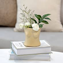 Butt Planter, forma femminile vaso corpo, vaso di fiori bottino con tappo di drenaggio