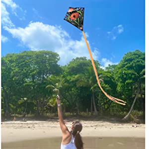 Image of woman Flying kite on Beach