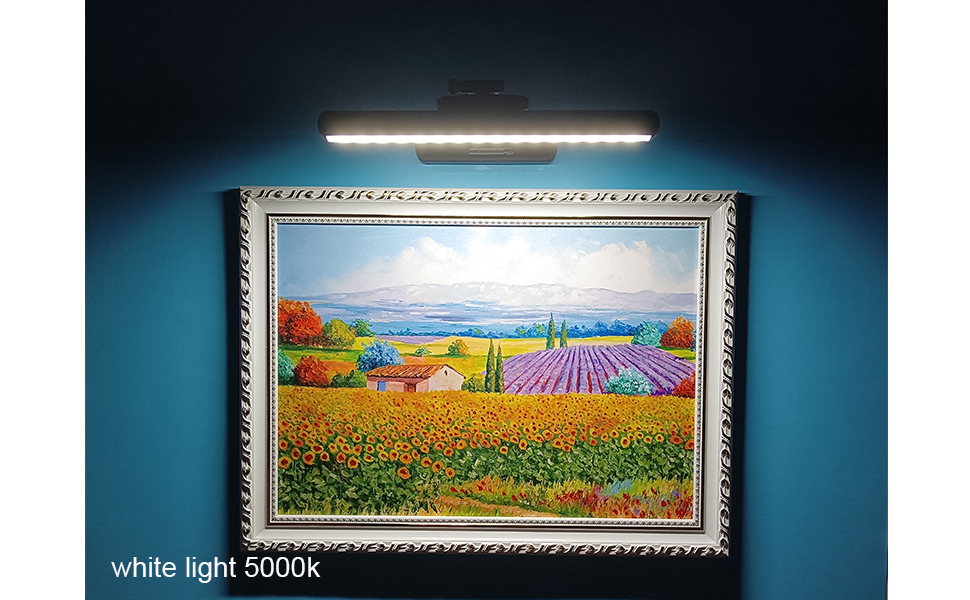 picture light for art work
