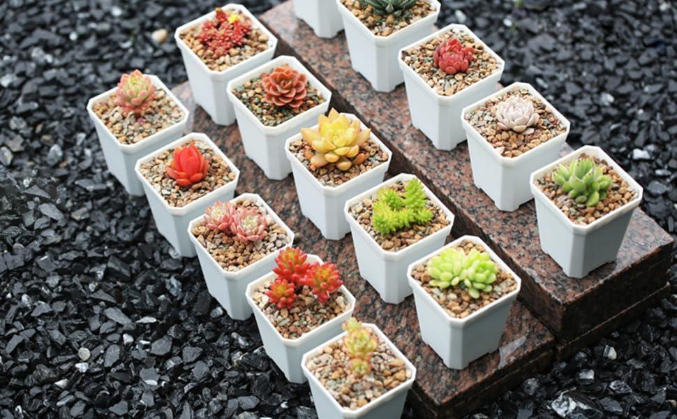 Mix Horticultural Gravel