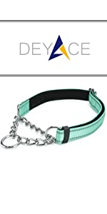 Classic Martingale Collar Teal