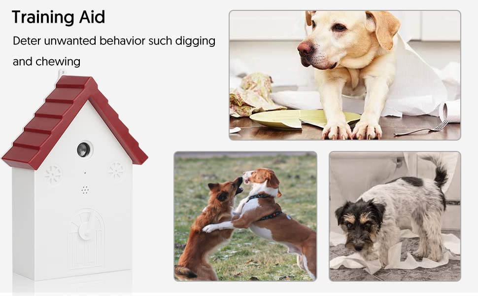 Deter unwanted behavior such digging and chewing