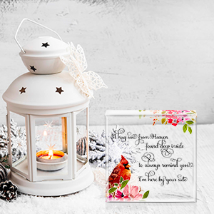 memorial gifts for loss of loved one Red cardinal gifts sympathy gifts for loss miscarriage gifts