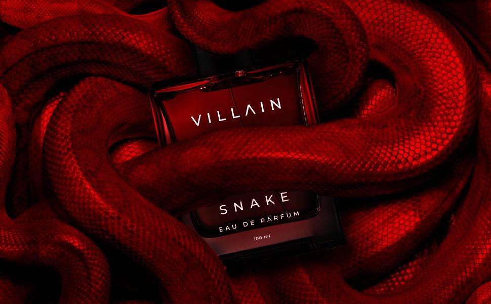 Snake Banner 2