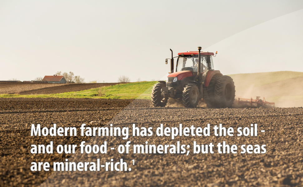 modern farming depletes soil and food seas are mineral rich