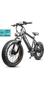 Discovery Electric Bike