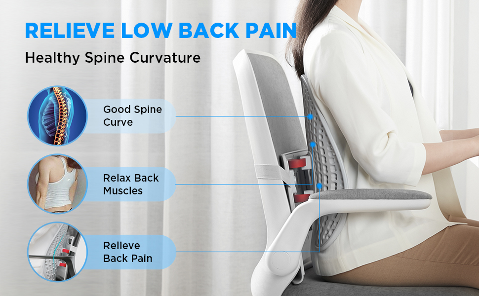 relieve low back pain healthy spine curvature