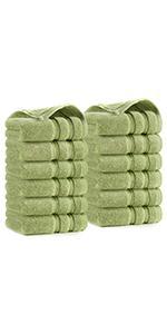 Luxury Premium Plush Washcloths 12 Pack